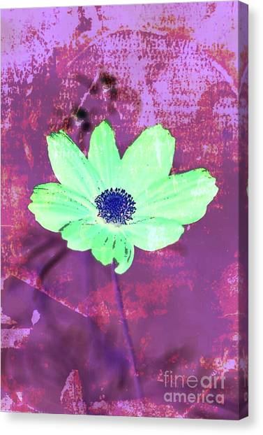 Canvas Print featuring the digital art Flower 2918 by Ron Labryzz