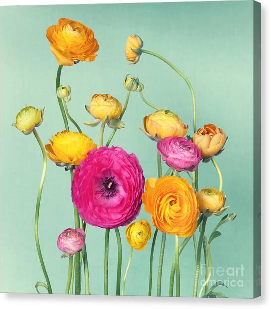 Present Canvas Print - Flower Arrangement Of Colorful by Ilight Photo