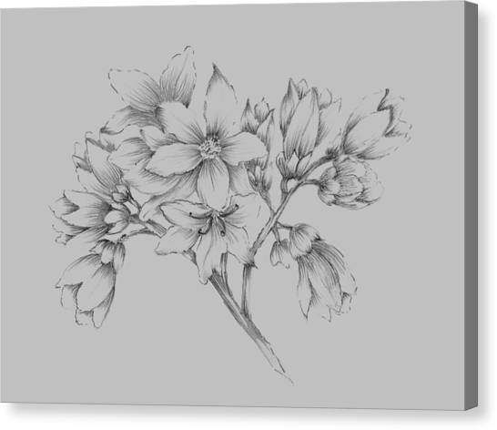 Dahlias Canvas Print - Flower Illustration by Naxart Studio