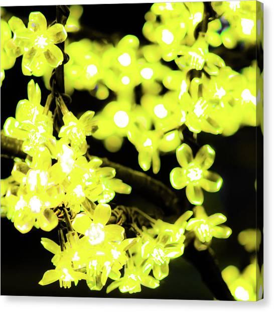 Flower Lights 6 Canvas Print