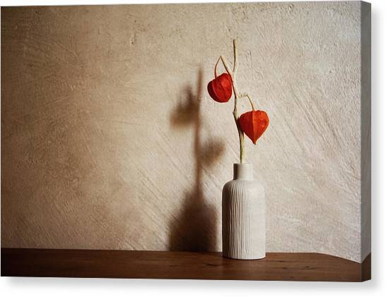 Vase Of Flowers Canvas Print - Flowers Stuck In Ceramic Vase by Alexandre Fp