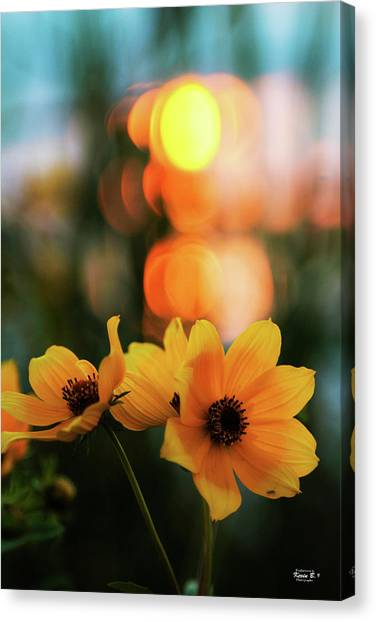 Flowery Bokeh Sunset Canvas Print