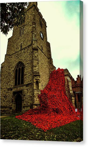 Flowing Poppies Canvas Print
