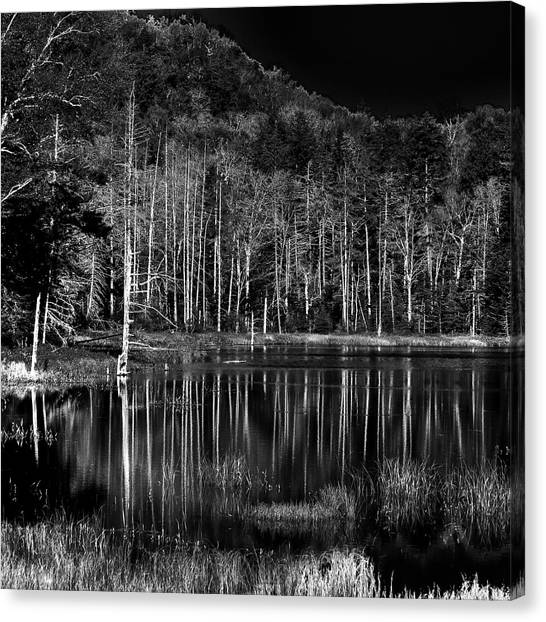 Canvas Print featuring the photograph Fly Pond Reflection by David Patterson