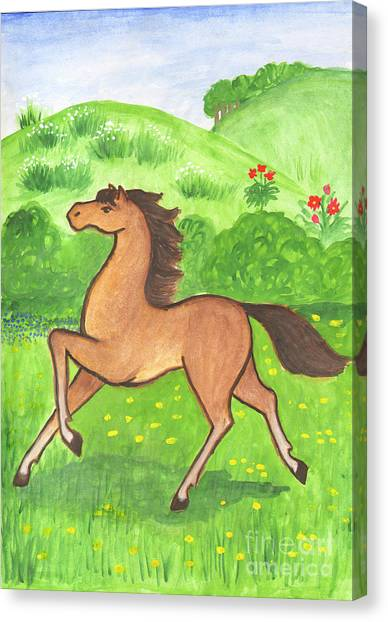 Foal In The Meadow Canvas Print