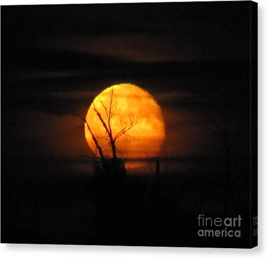 Foggy Harvest Moon Canvas Print