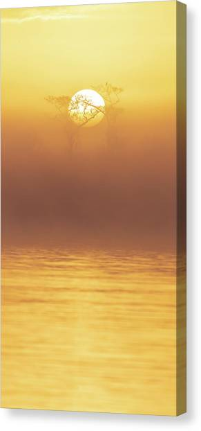 Foggy Wetlands Sunrise Canvas Print