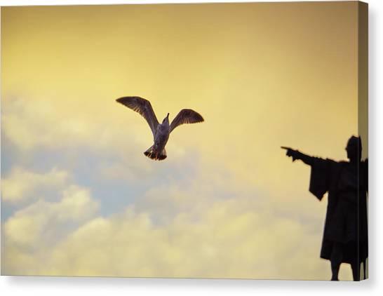 Follow This Bird -- Columbus Discovering America Canvas Print