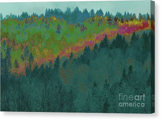 Forest And Valley Canvas Print