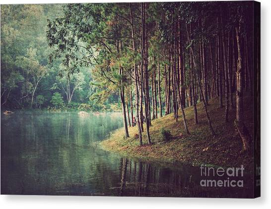 Woodland Canvas Print - Forest Background ,vintage Style by Nonnakrit