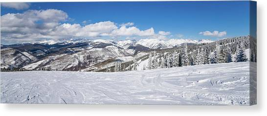 Forest Covered By Snow With Skiing Canvas Print