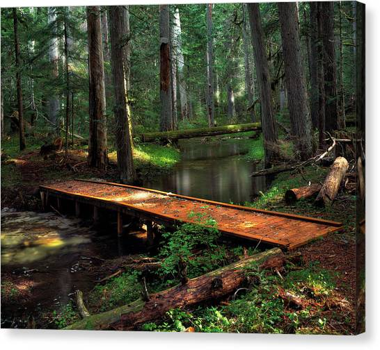 Forest Foot Bridge Canvas Print by Leland D Howard