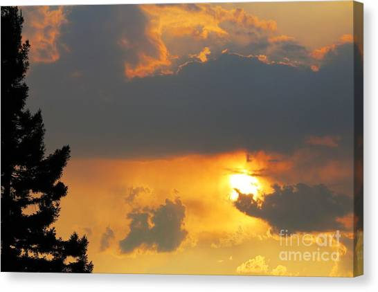 Canvas Print - Forest Grove Solar Storm by Nick Gustafson