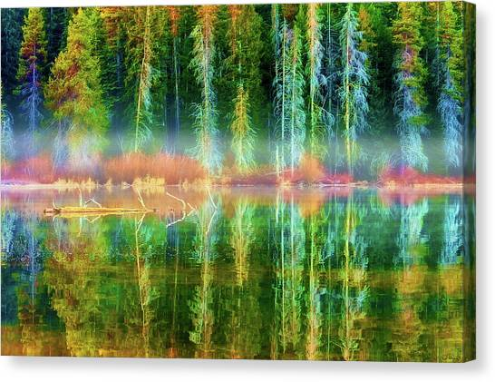 Canvas Print featuring the photograph Forest Mirrored  by Dee Browning