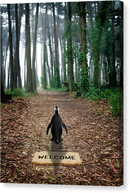 Forest Penguin Canvas Print by Richard Newstead