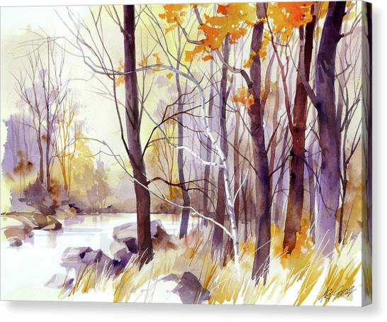 Forest Pond Canvas Print by Art Scholz