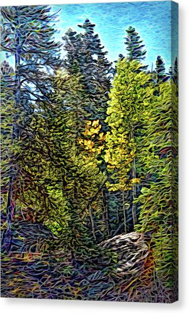 Canvas Print featuring the digital art Forest Sunlight by Joel Bruce Wallach