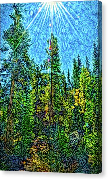 Canvas Print featuring the digital art Forest Sunlit Grace by Joel Bruce Wallach