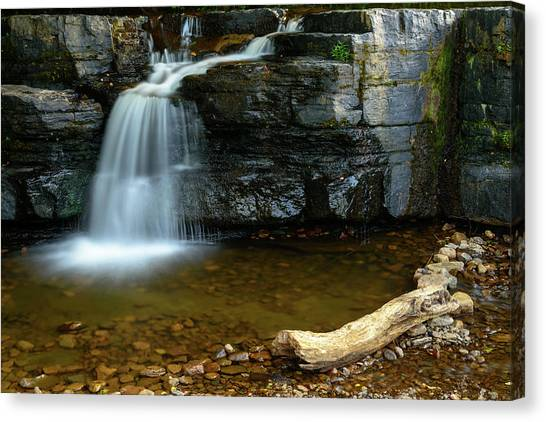 Forged By Nature Canvas Print