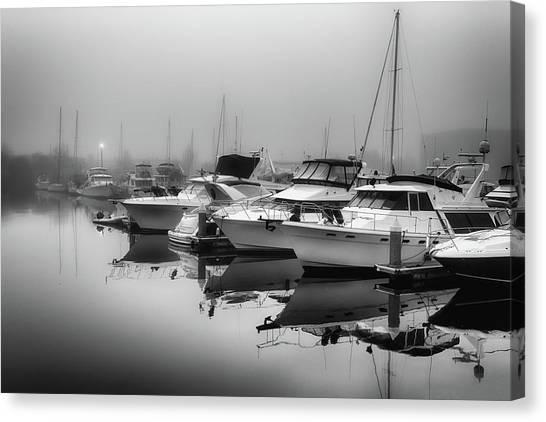 Foss Fog Canvas Print