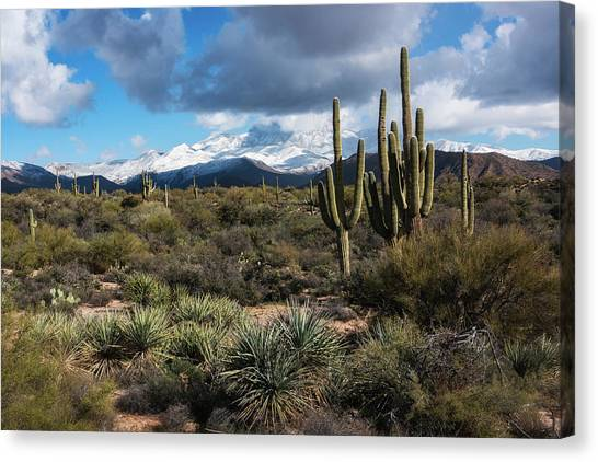 Canvas Print - Four Peaks On A Snow Day  by Saija Lehtonen