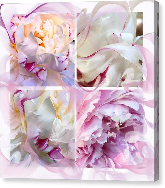 Four Peonies  Canvas Print