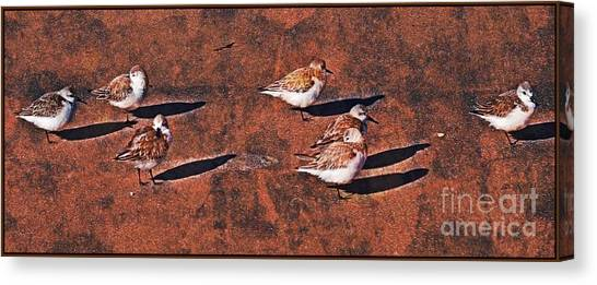 Canvas Print - Fowling In Formation by Mindy Newman