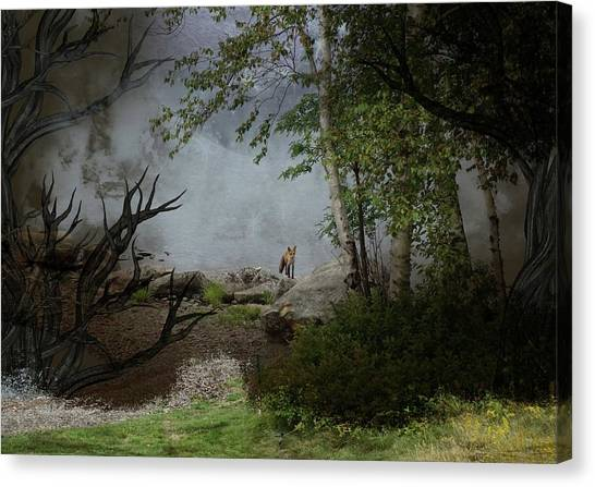 Fox On Rocks Canvas Print