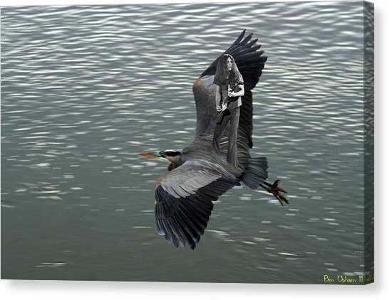 Canvas Print featuring the photograph Free Birds In Flight by Ben Upham