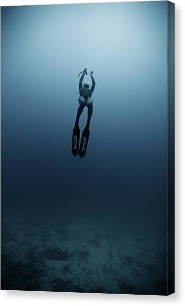 Freediving Canvas Print by Underwater Graphics