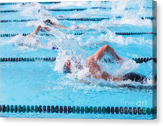 Exercising Canvas Print - Freestyle Swimmers Racing by Suzanne Tucker