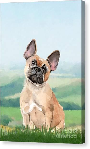 Purebred Canvas Print - French Bulldog by John Edwards