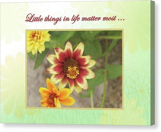 Friendship, A Smiling Indian Blanket Flower  Canvas Print