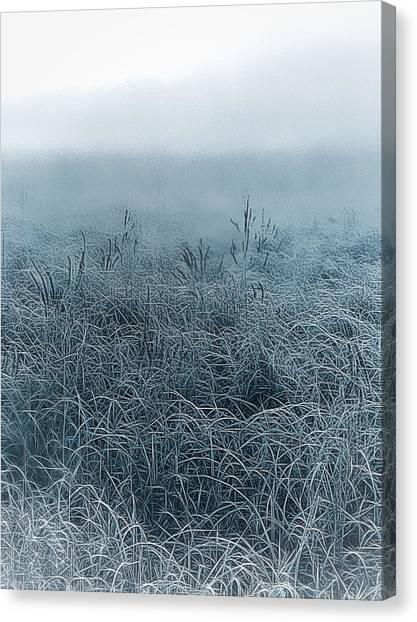 Frigid Morn Canvas Print