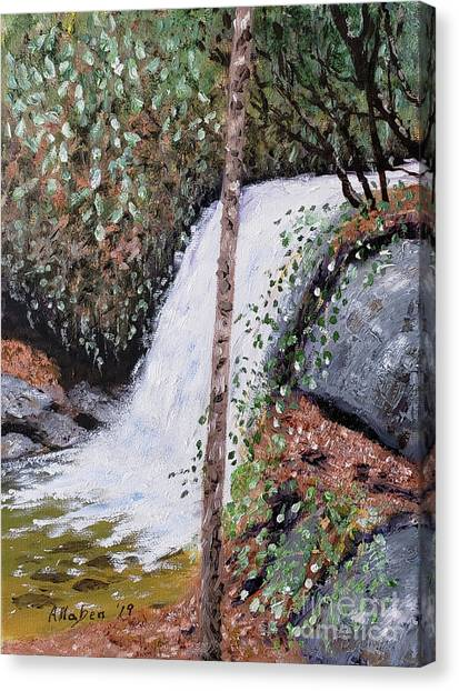 Frolictown Falls Canvas Print