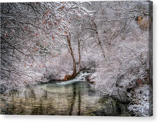 Frosty Pond Canvas Print