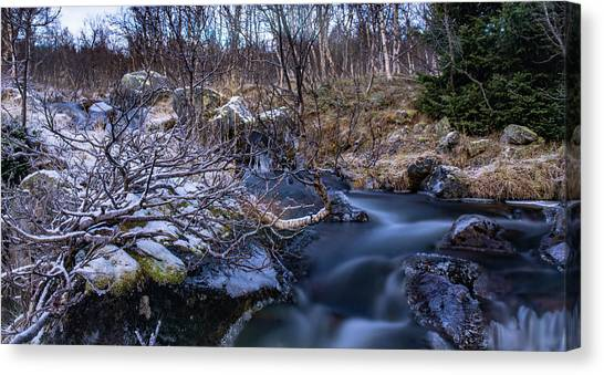Frozen River And Winter In Forest Canvas Print