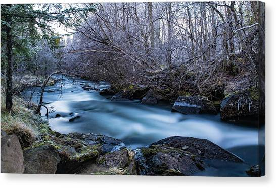 Frozen River Surrounded With Trees Canvas Print