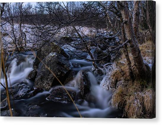 Frozen Stream In Winter Forest Canvas Print