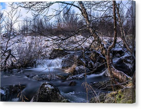 Frozen Tree In Winter River Canvas Print