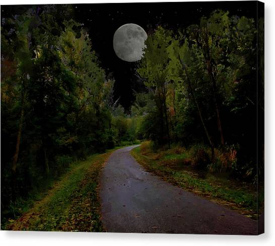 Full Moon Over Forest Trail Canvas Print by Cedric Hampton
