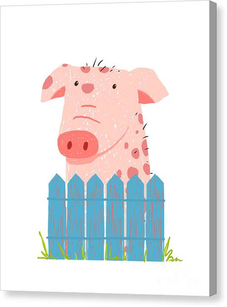 Livestock Canvas Print - Funny Cartoon Pig Sitting Over Fence by Popmarleo