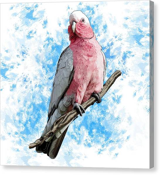 Canvas Print - G Is For Galah by Joan Stratton