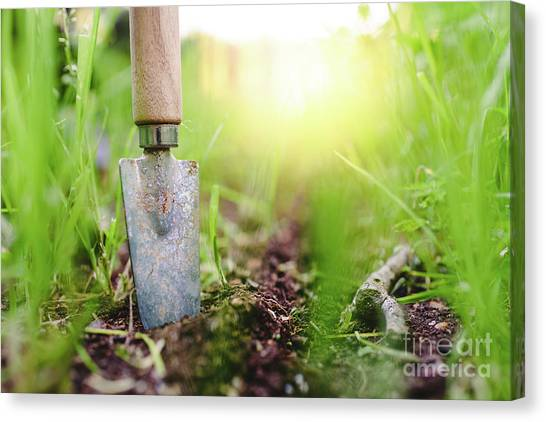 Gardening Shovel In An Orchard During The Gardener's Rest Canvas Print