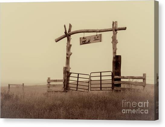Gate In The Wilderness Canvas Print