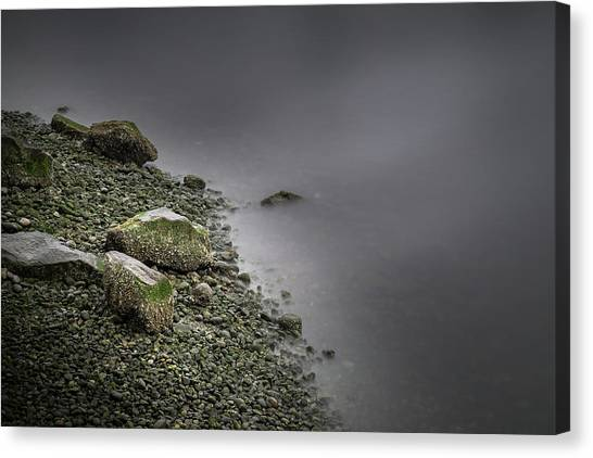Canvas Print featuring the photograph Gentleness by Juan Contreras
