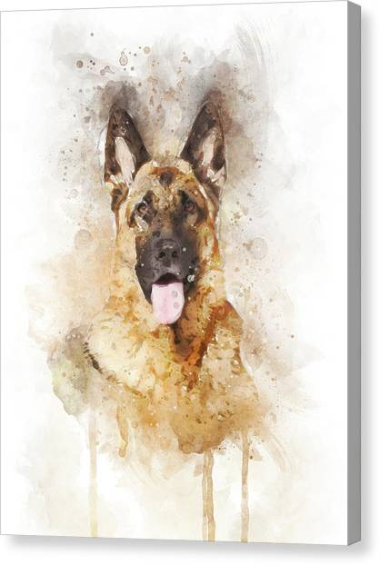 German Shepherds Canvas Print - German Shepherd by Aged Pixel