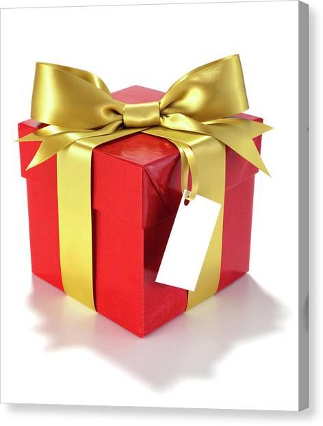 Red Knot Canvas Print - Gift Box by John Kuczala