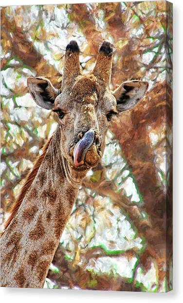 Giraffe Says Yum Canvas Print