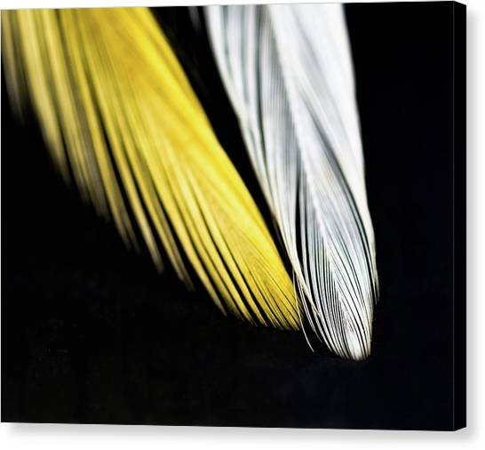 Give Me Wings So I Can Fly Canvas Print